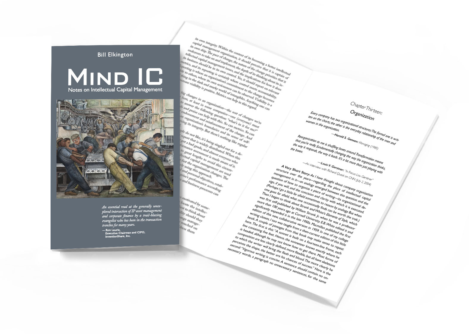 Book cover of MIND IC